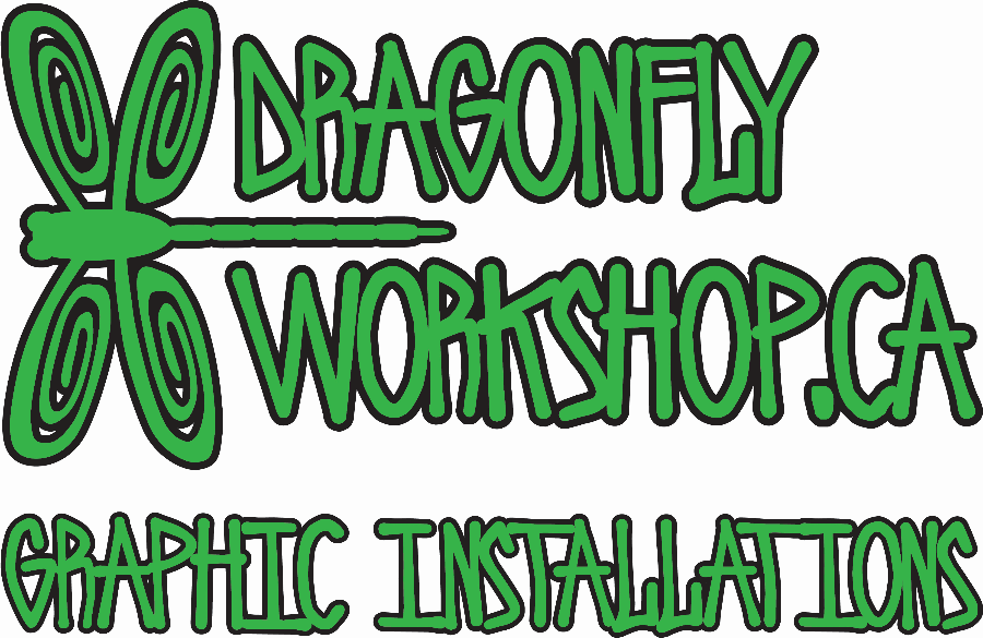 Dragonfly Workshop